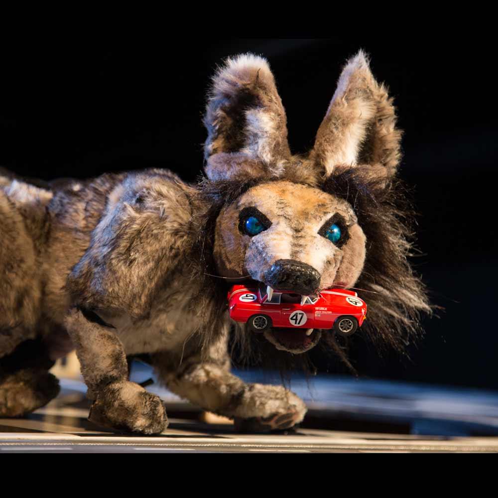 Terrapin Puppet Theatre Red Racing Hood